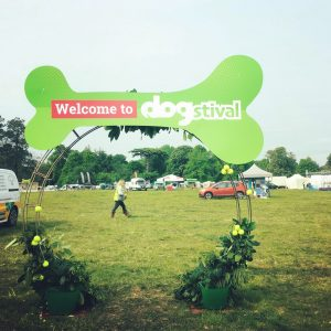 Dogstival   Pylewell Park, Hampshire